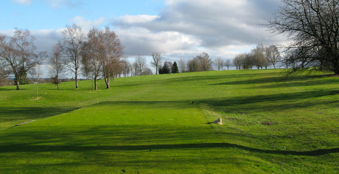 Course Gallery - Stirling Golf Club - 17th Hole, Tree In